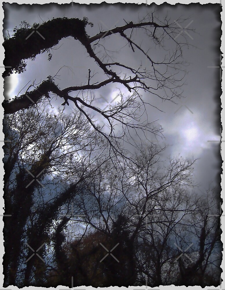 Something Dark and Dreary by Tammy Soulliere
