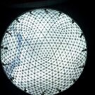 Globe network by desertman