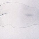 Nude sheet by Jason Moses