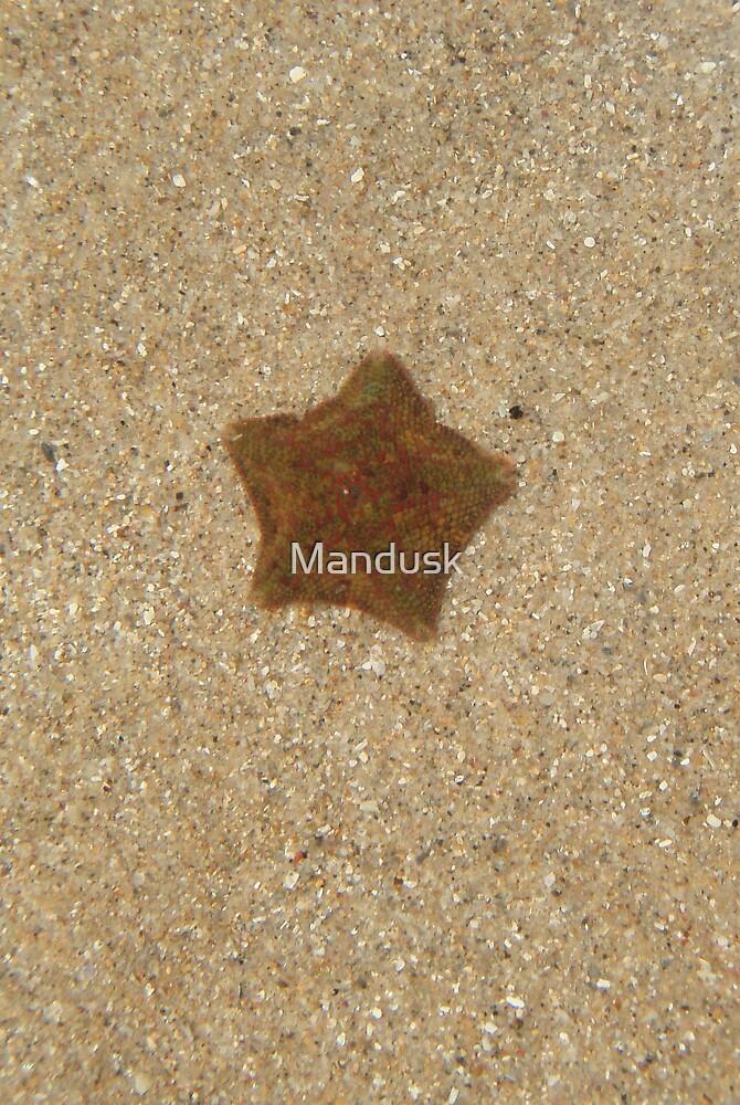 undisturbed by Mandusk