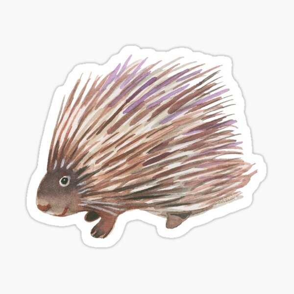 Flossie Sticker