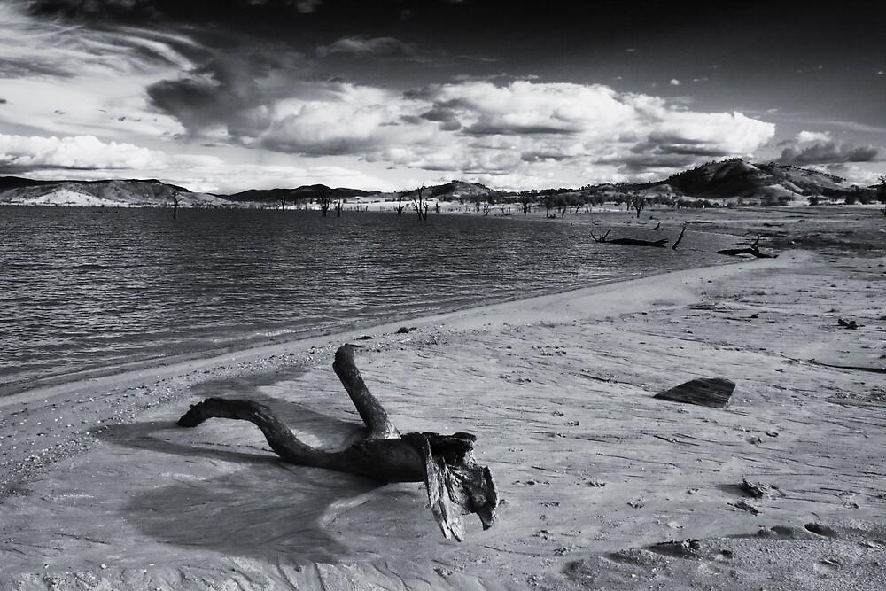 Drift by David Haviland