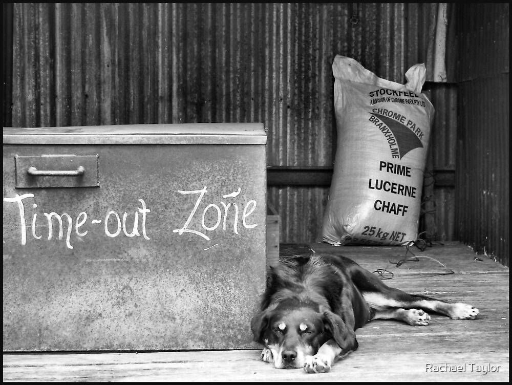 Time Out Zone by Rachael Taylor