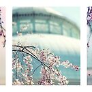 Greenhouse Blossoms Triptych by Jessica Jenney