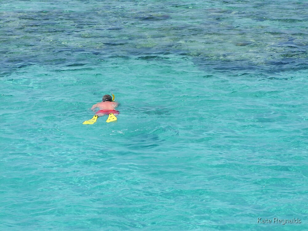 Snorkelling in Red Sea by Kate Reynalds