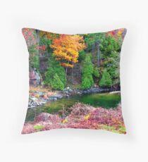 Rideau Canal 2 Throw Pillow