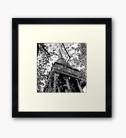 Stork legs Framed Print