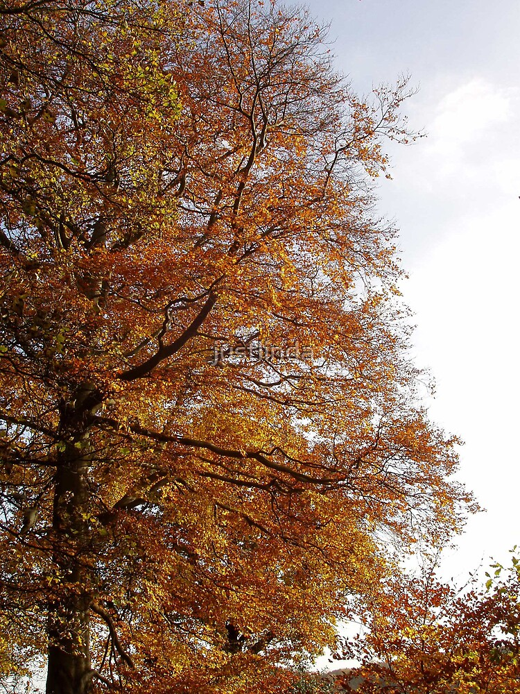 Golden Tree by justlinda