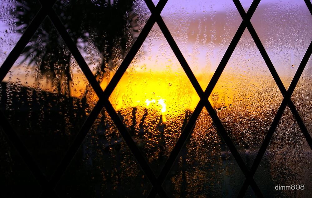 sunrise  by dimm808