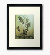 Thistle in Autumn Framed Print