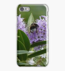 Bumbly Bee iPhone Case/Skin
