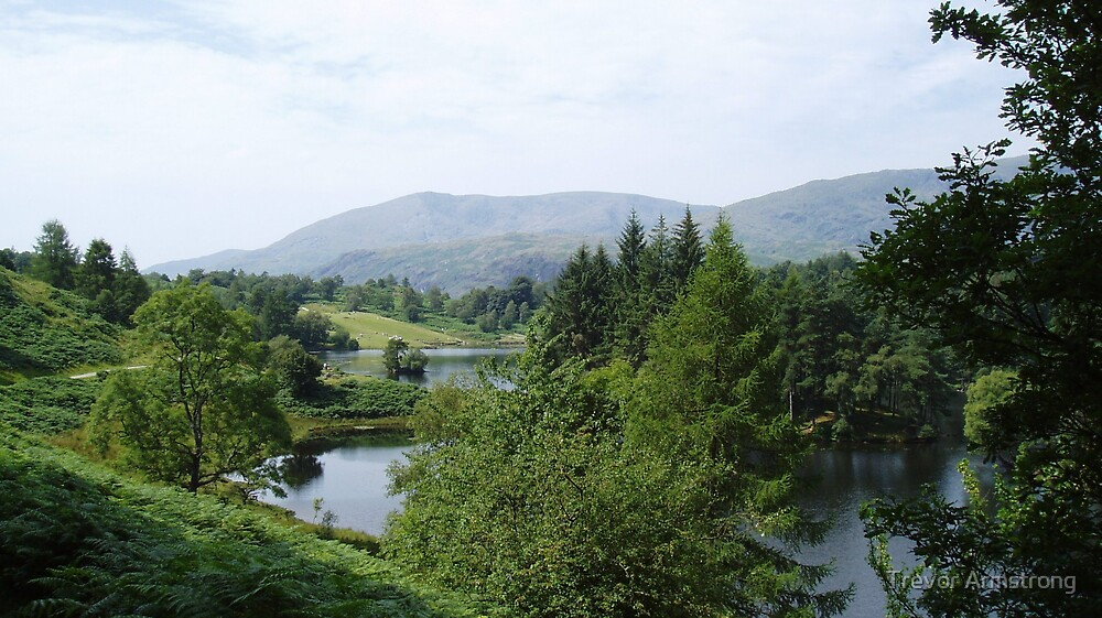 TARN HOWS 2  by Trevor Armstrong