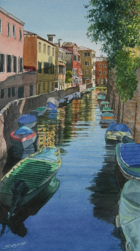 Sunny reflections, Venice by Freda Surgenor