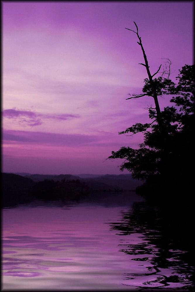 Kentucky's Sunset by brandie