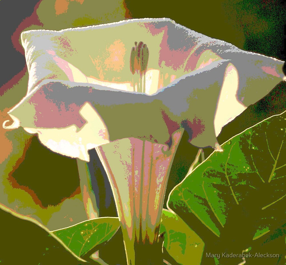 Angel Trumpet by Mary Kaderabek-Aleckson