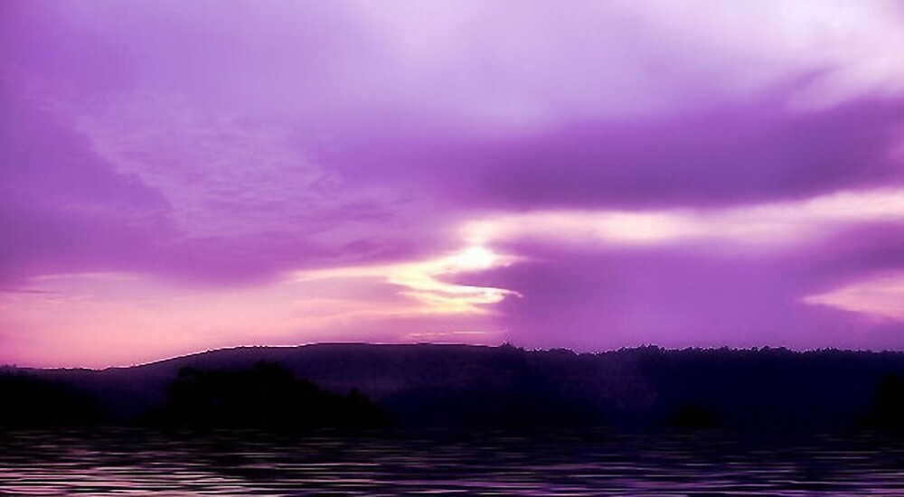 Purple Haze by brandie