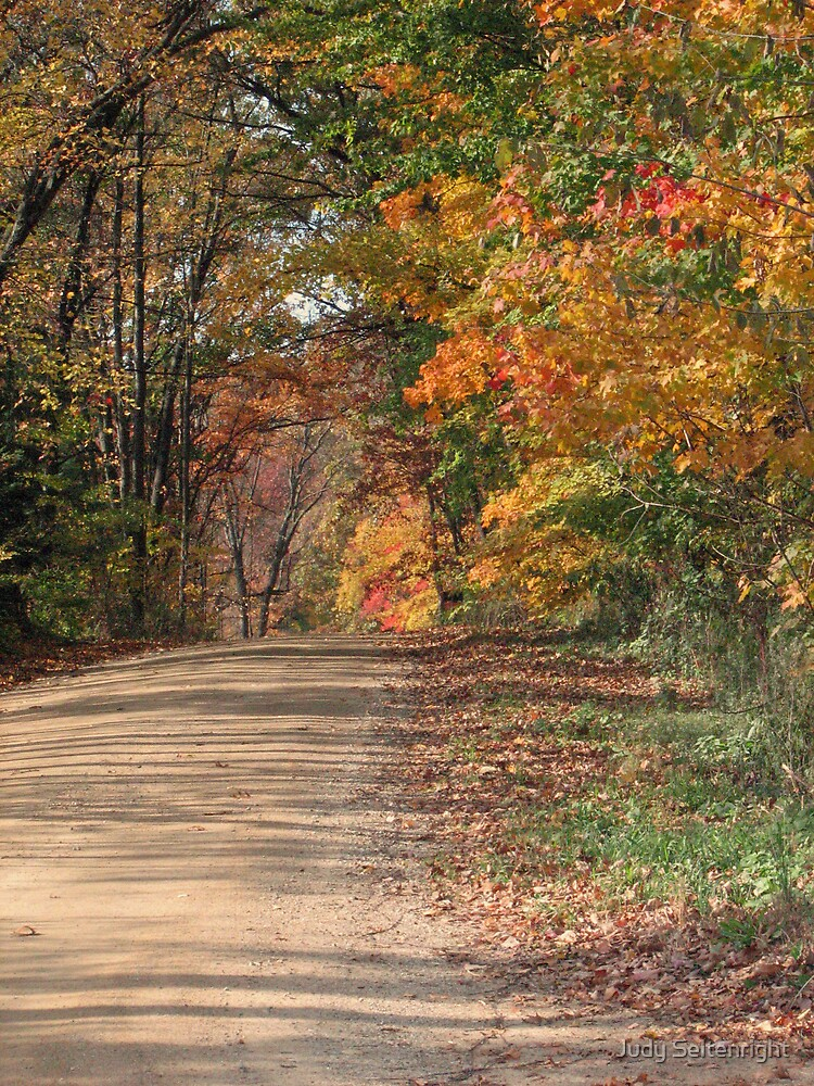Country Road by Judy Seltenright