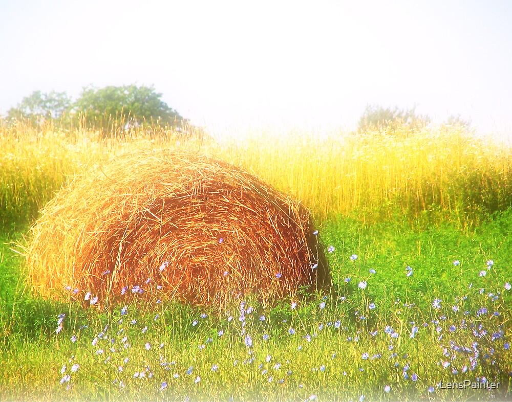 Dreamy Summers by LensPainter