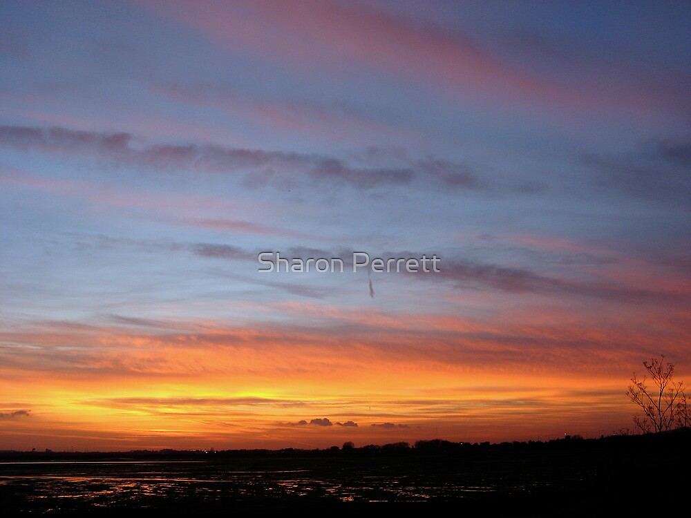 Superb Sunset by Sharon Perrett