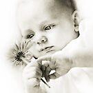 Innocence by Annette Blattman