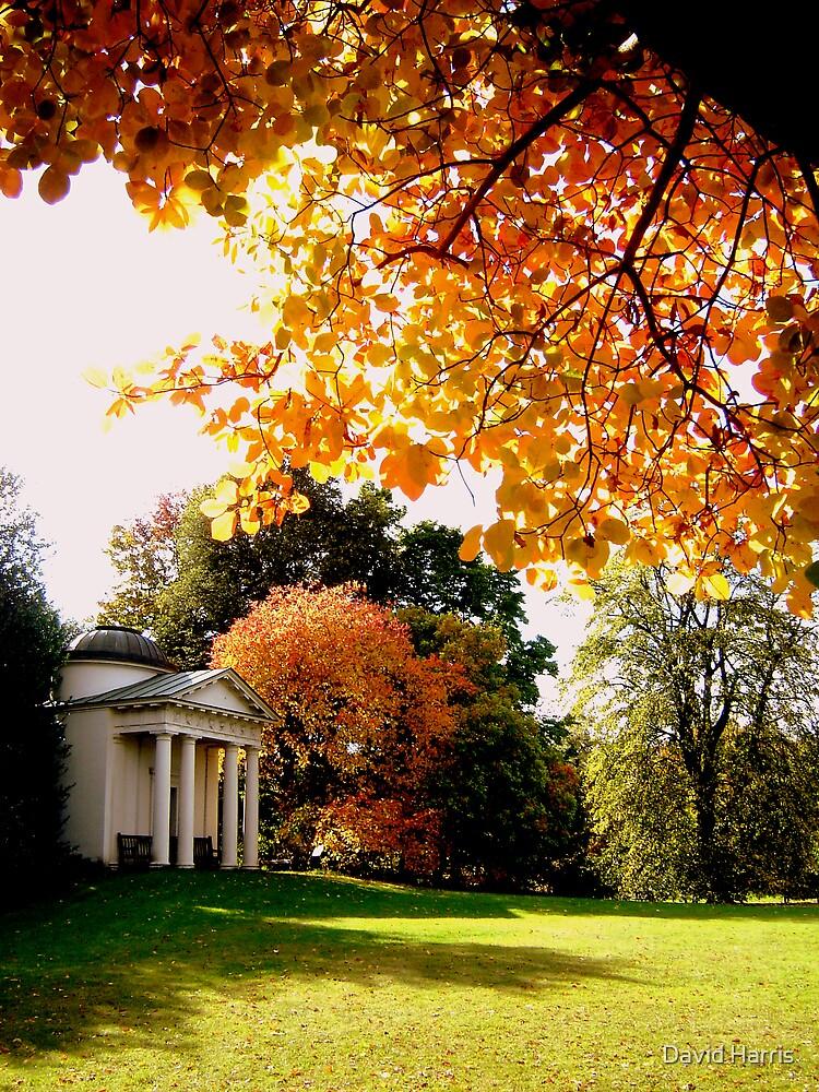 Autumn at Kew Gardens London 2007 by David Harris