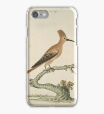 Hop (Upapa africana), Robert Jacob Gordon iPhone Case/Skin