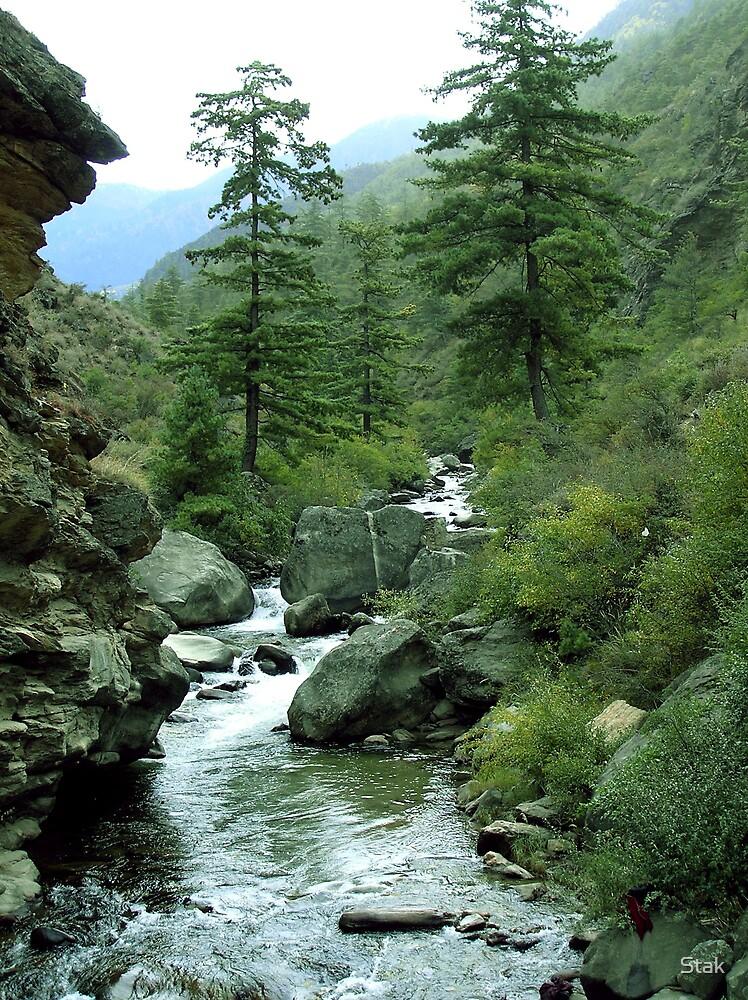 Bhutan scene by Stak