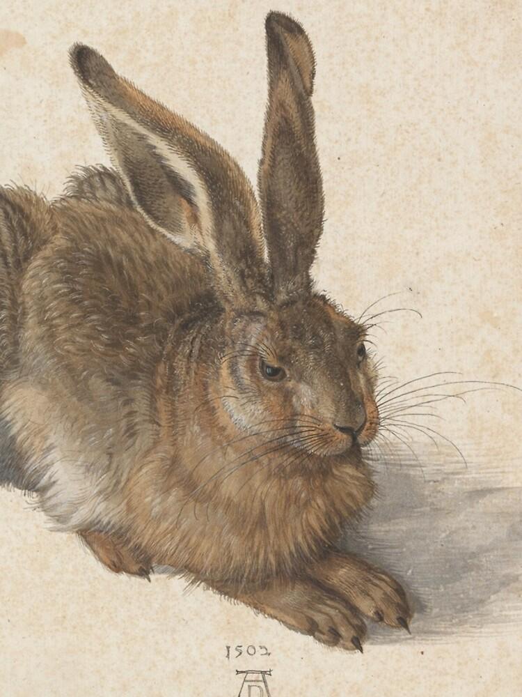 Albrecht Dürer - Young Hare 1502 by billythekidtees