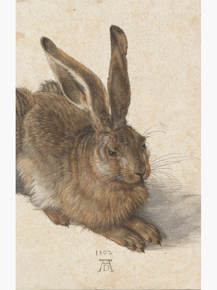 Albrecht Dürer - Young Hare 1502 by billythekidtees