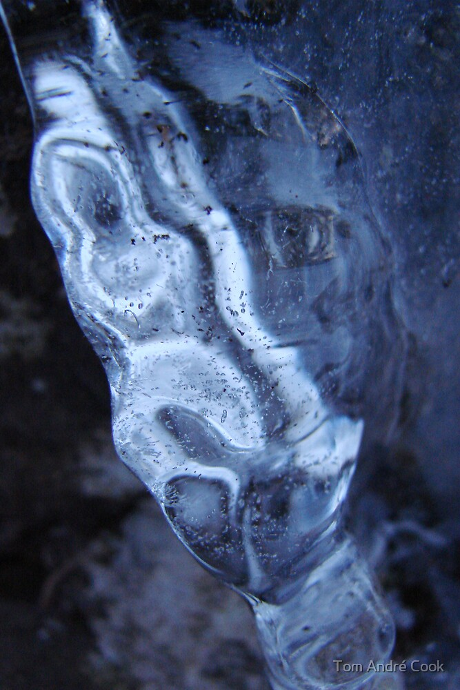 Dual ice face by Tom André Cook