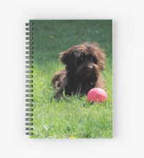 Chocolate Cockapoo Puppy laying in the Grass Spiral Notebook