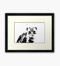 cute cat Framed Print