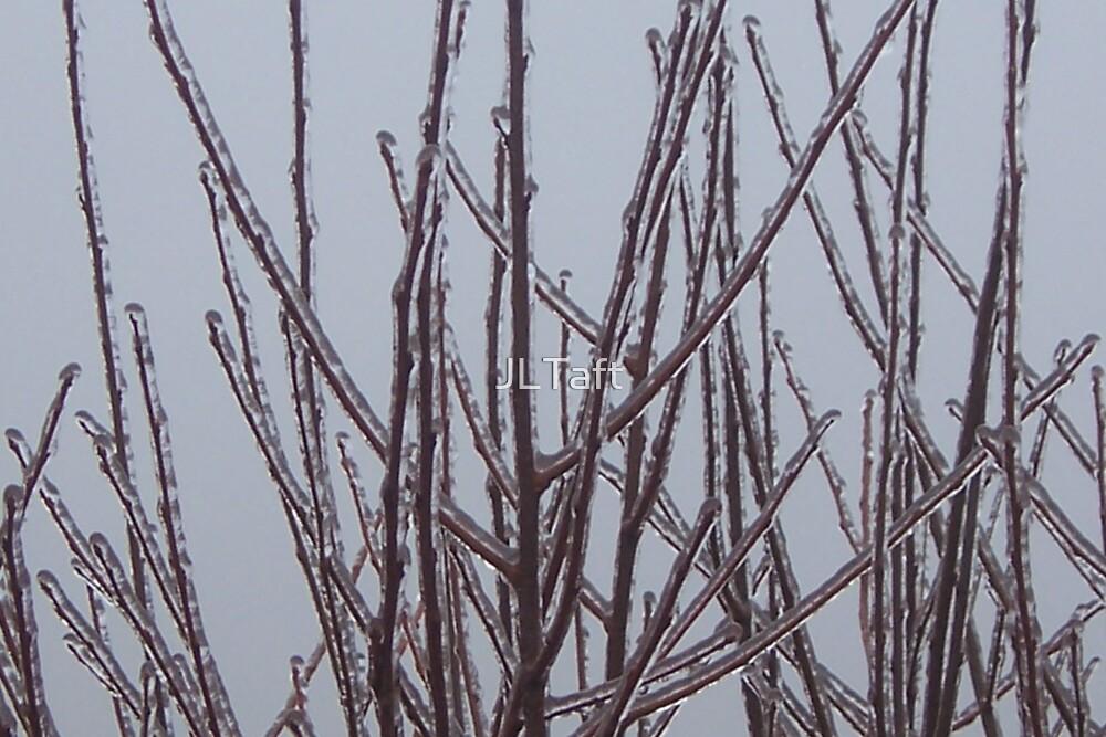 Frozen Twigs by JLTaft