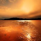 TAKE A WALK ON MY BEACH by leonie7