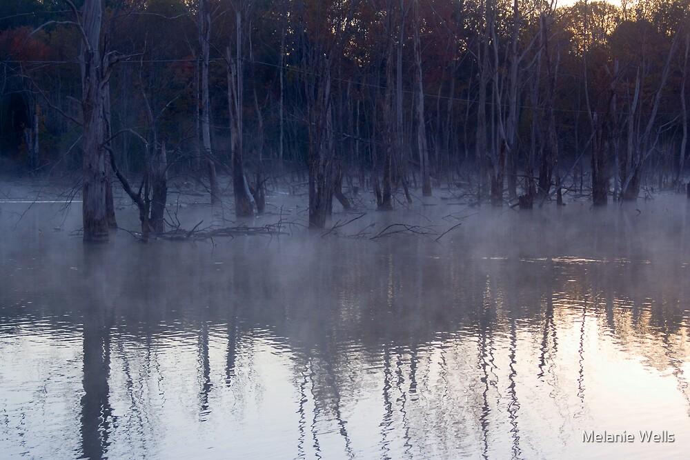 Foggy Misty Mornin by Melanie Wells