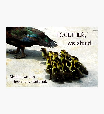 Together We Stand Photographic Print