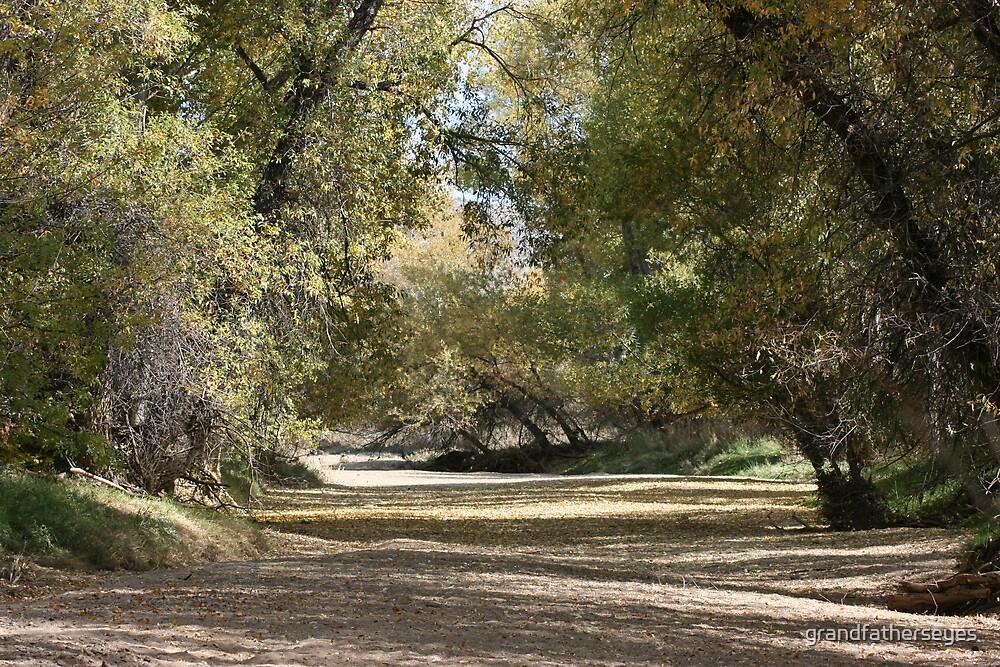 Arizona Fall by grandfatherseyes