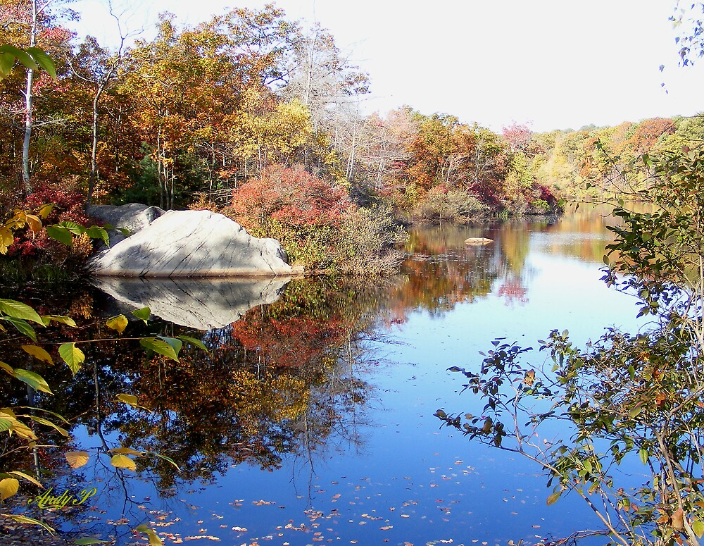 Ames Nowell state park, Massachusetts. by Andy2302
