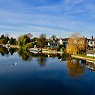 View from Bidford Bridge in Autumn by ArtStudioV