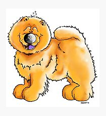 Fluffy Chow Chow Photographic Print