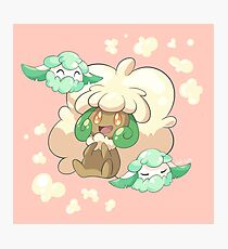Whimsicott Photographic Print