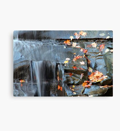 Autumn Is Here Canvas Print