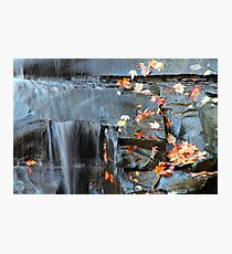 Autumn Is Here Photographic Print