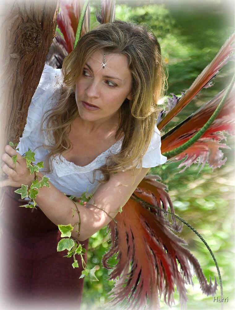 Fairy in hiding by Harri