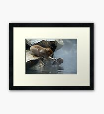 Monkey Day Spa Framed Print