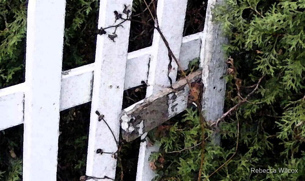 Fenced In by Rebecca Brann