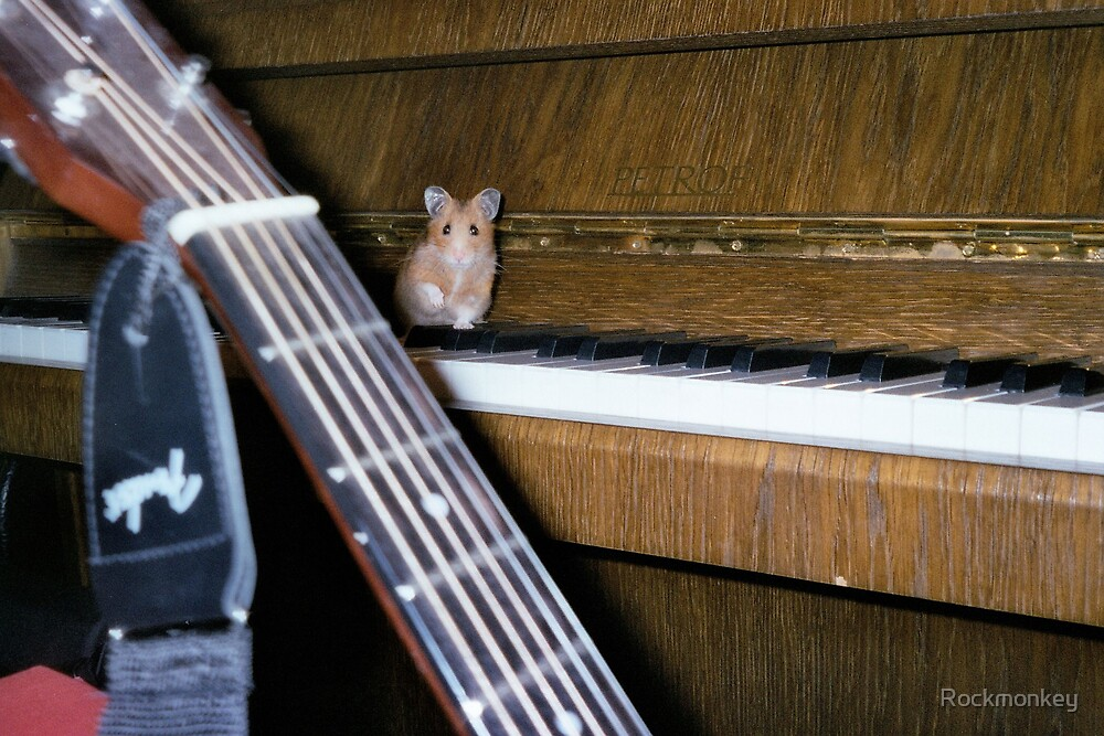 Mouse Concerto by Rockmonkey