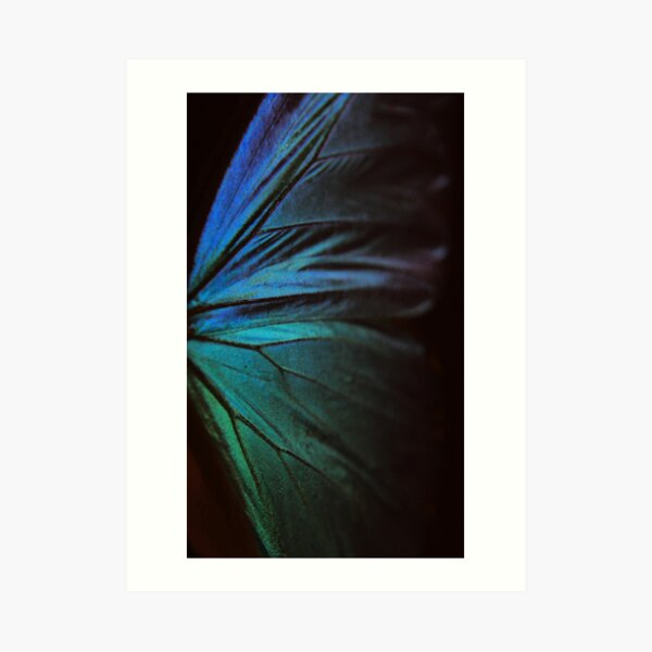 Morpho 1 Art Print