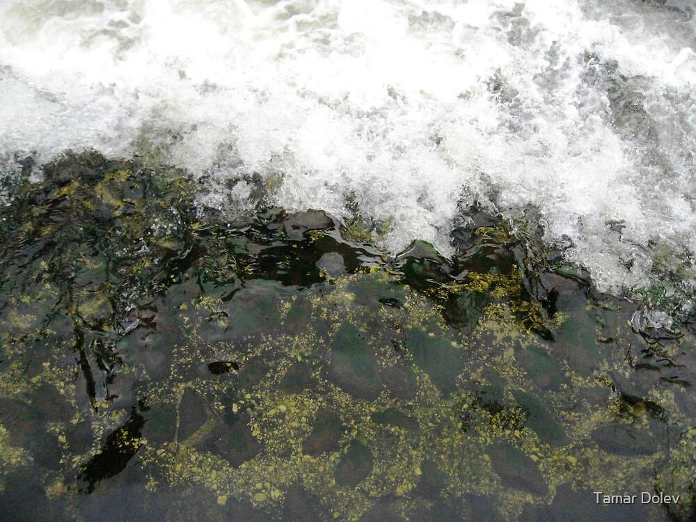 Flowing motion by Tamar Dolev