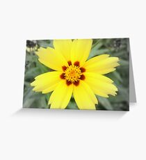 Sunny 2-d Greeting Card